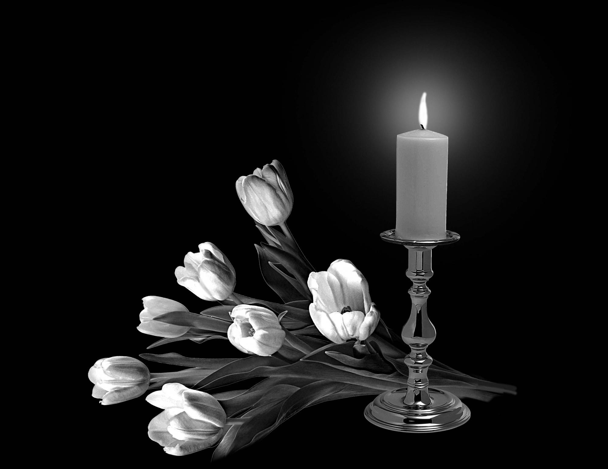 рецепты тщательно цветы и свеча на памятник фото можете воспроизводить разные