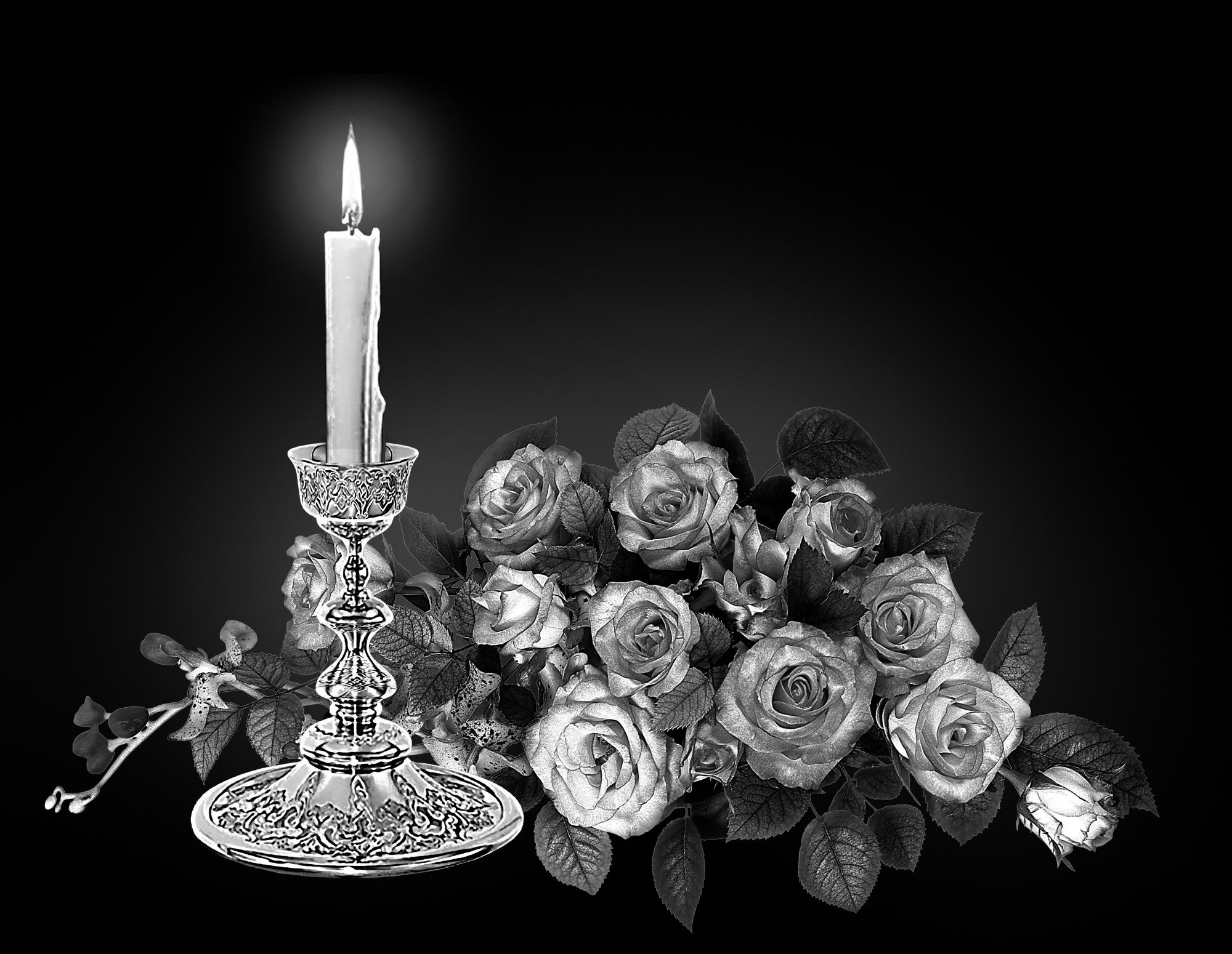 рекомендовали остаться картинки цветов и свечей на надгробии результате олейников